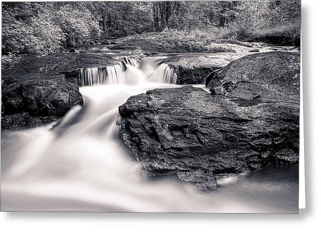 Wilderness River Greeting Card