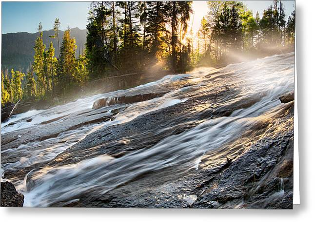 Wilderness River Greeting Card by Leland D Howard