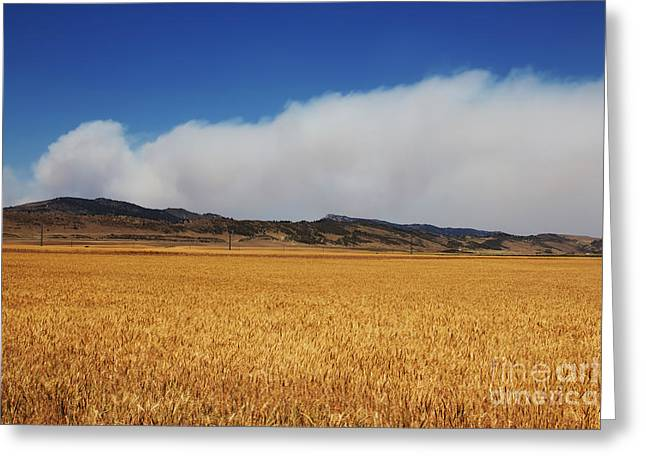 Wildfire Greeting Card by Jon Burch Photography