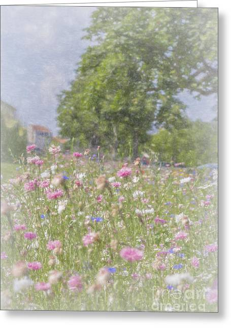 Wildflower Impressionism Greeting Card