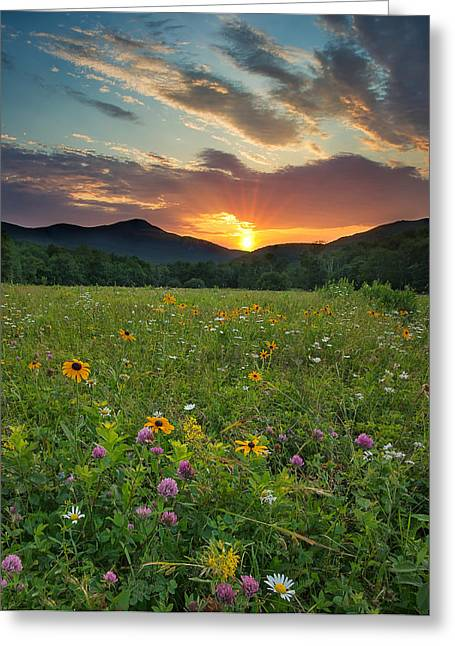 Wildflower Sunset Greeting Card