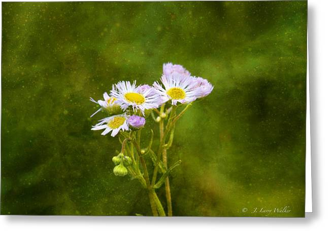 Wildflower Swaying In The Wind Greeting Card by J Larry Walker
