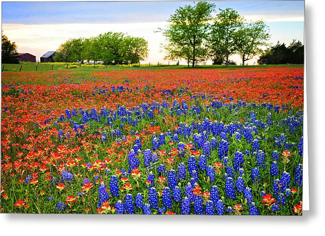 Wildflower Tapestry Greeting Card