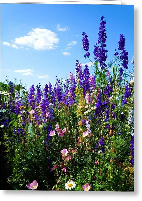 Wildflowers #9 Greeting Card