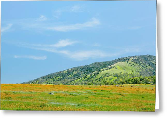 Afternoon Delight - Wildflowers And Cirrus Clouds - Spring In Central California Greeting Card