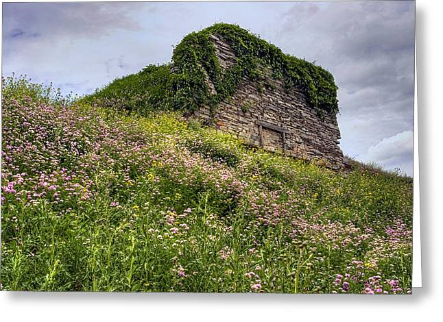Wildflowers And Vines Surround The Loyalsock Stonework Lime Kiln Greeting Card