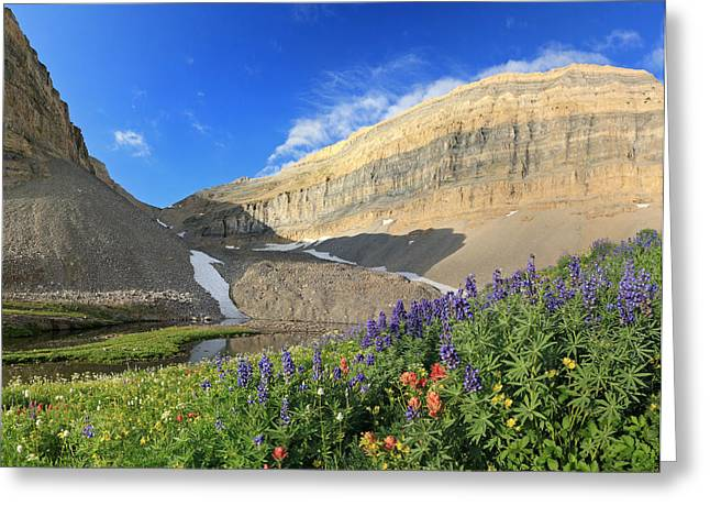 Wildflowers At Emerald Lake. Greeting Card