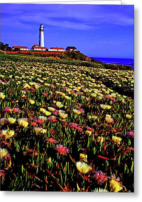 Wildflowers At Pigeon Point Lighthouse Greeting Card