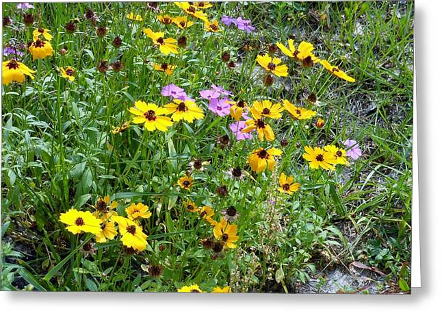 Wildflowers Greeting Card by Kay Gilley