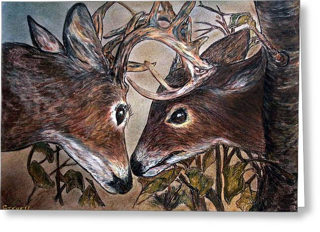 Wildlife In Action Greeting Card