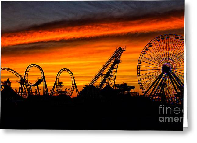 Wildwood At Dawn Greeting Card by Mark Miller