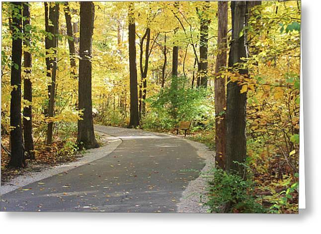 Wildwood Path Greeting Card by Jack Schultz