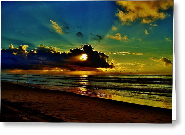Wildwood Sunrise Greeting Card