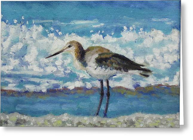Willet Greeting Card by Sharon Guy