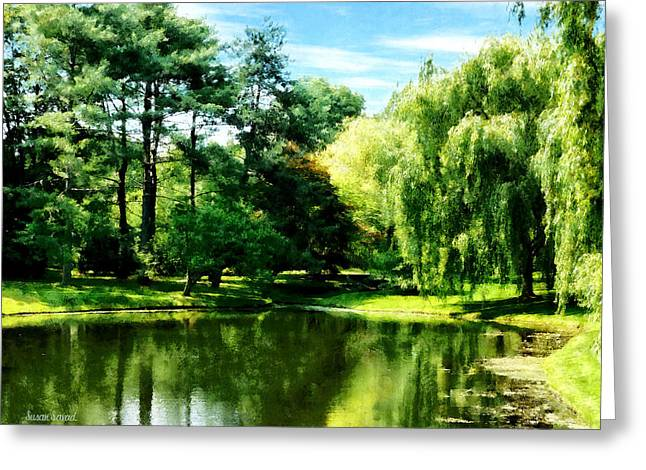 Willow By The Lake Greeting Card by Susan Savad