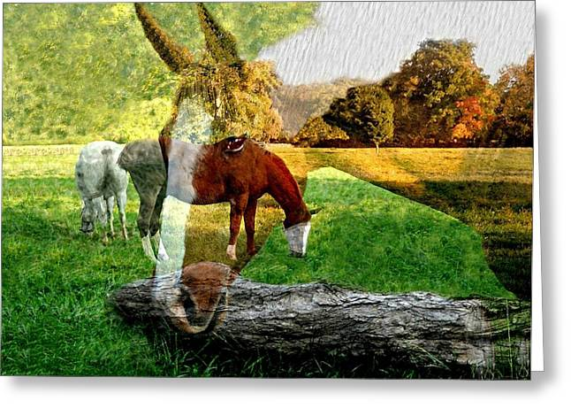 Willow Greeting Card by Diana Angstadt