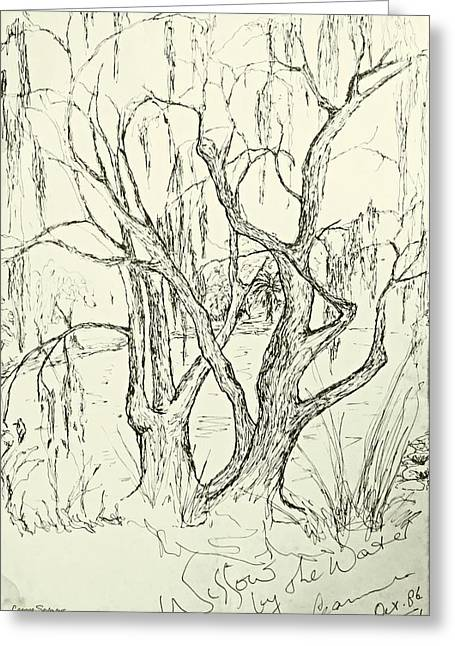 Willows By The Lake Greeting Card
