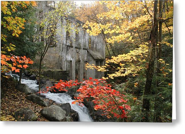 Greeting Card featuring the photograph Willsons Ruins In Gatineau Park In Quebec by Rob Huntley