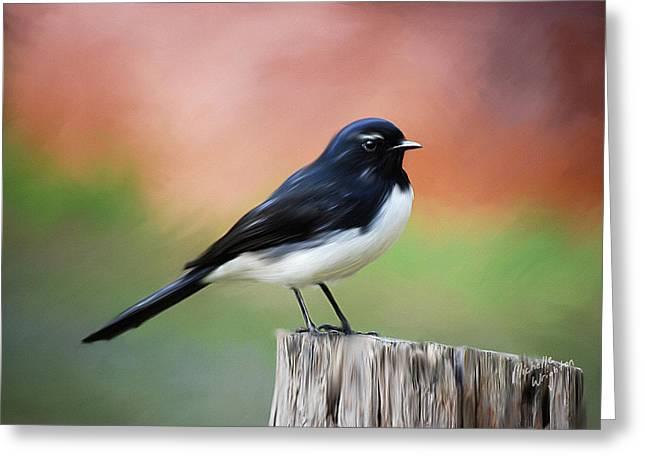 Willy Wagtail Austalian Bird Painting Greeting Card