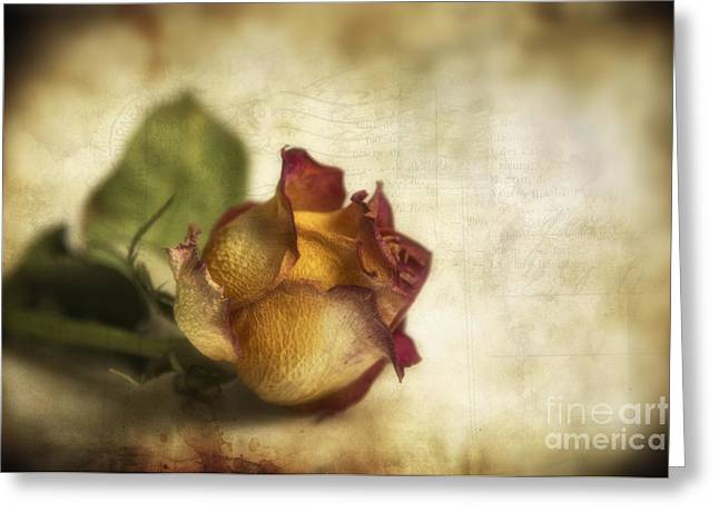 Wilted Rose Greeting Card by Veikko Suikkanen