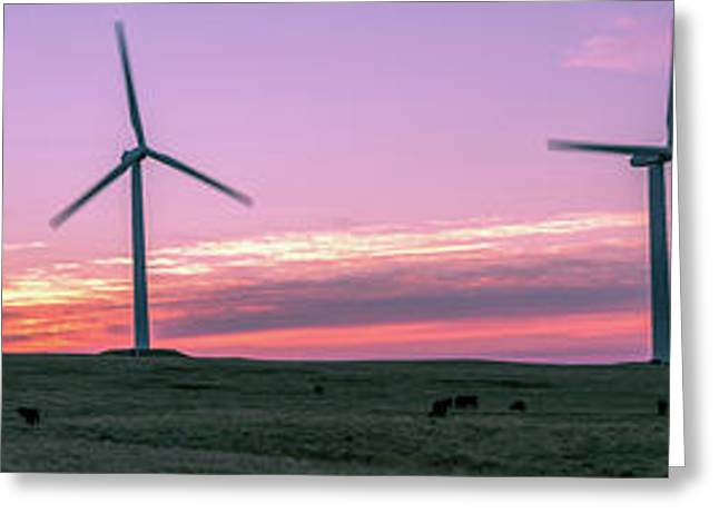 Wind Farm With Cows At Sunrise, Cowley Greeting Card