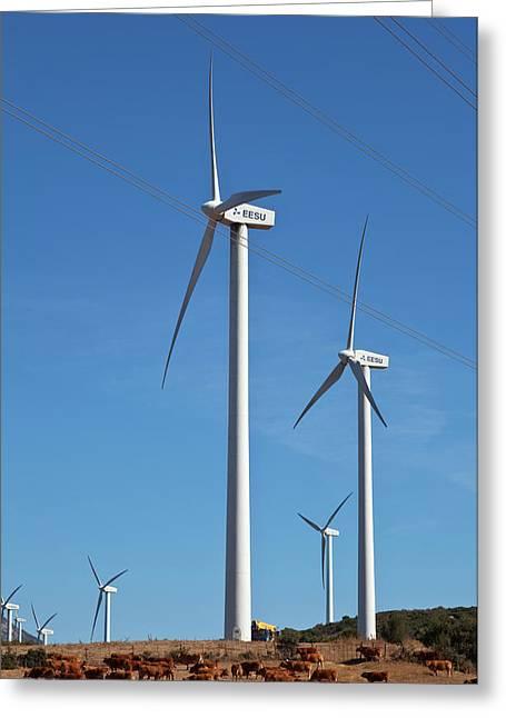 Wind Generators Or Windmills Greeting Card