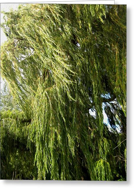 Wind In The Willow Greeting Card by Kathy Bassett