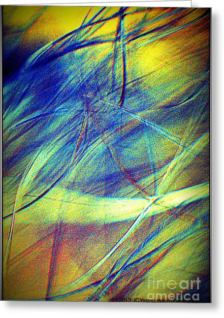 Wind Greeting Card by JCYoung MacroXscape