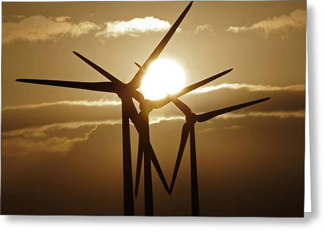 Wind Turbines Silhouette Against A Sunset Greeting Card
