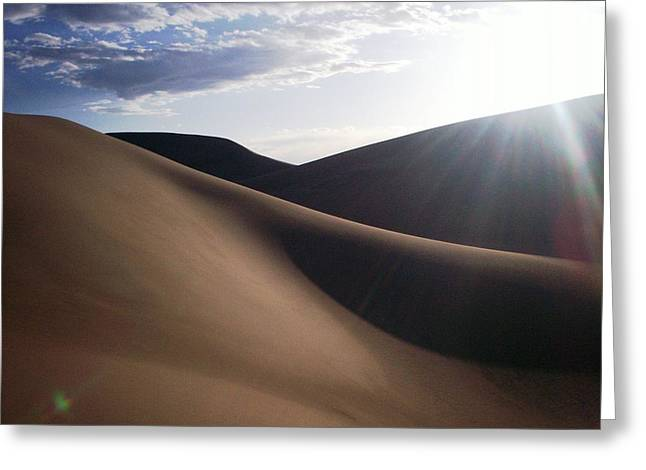 Greeting Card featuring the photograph Windblown Curves by Carlee Ojeda