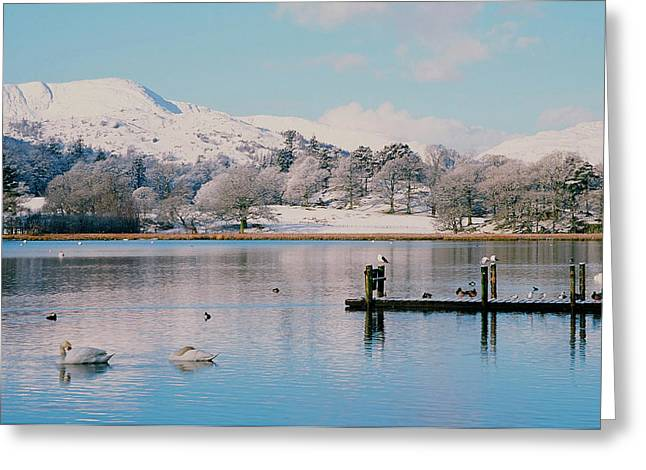 Windermere In Snow Greeting Card by Ashley Cooper