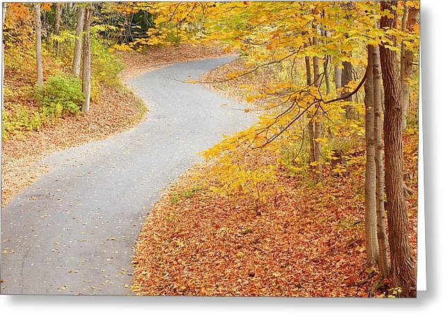 Winding Into Fall Greeting Card