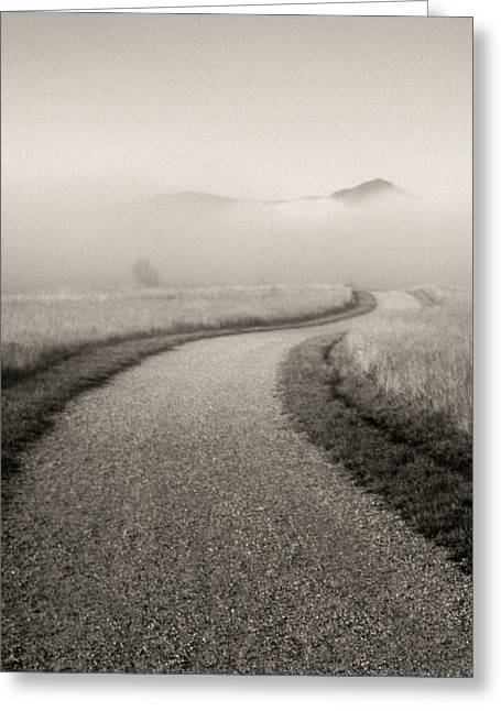 Winding Path And Mist Greeting Card by Marilyn Hunt