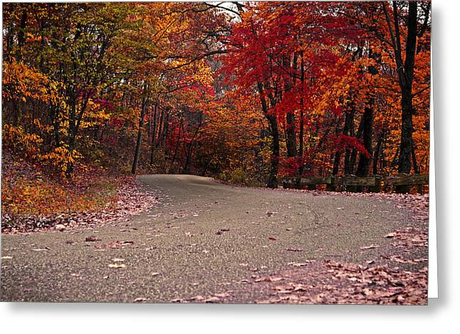 Winding Road Greeting Card by Caitlyn Hymer