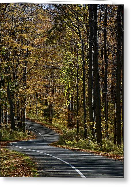 Winding Road In The Woods Greeting Card