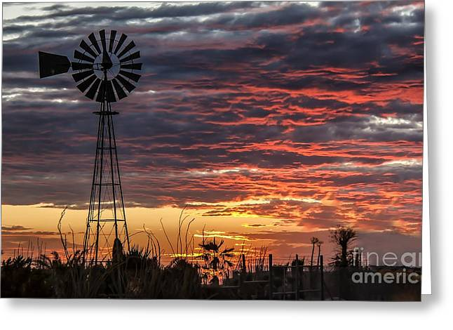 Windmill And The Sunset Greeting Card by Robert Bales