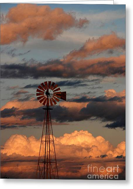 Windmill At Sunset V Greeting Card by Cindy McIntyre