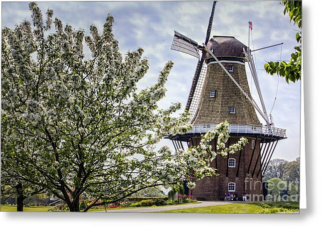 Windmill At Windmill Gardens Holland Greeting Card