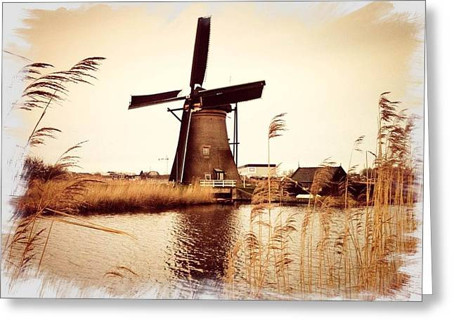 Windmill Greeting Card by Beril Sirmacek