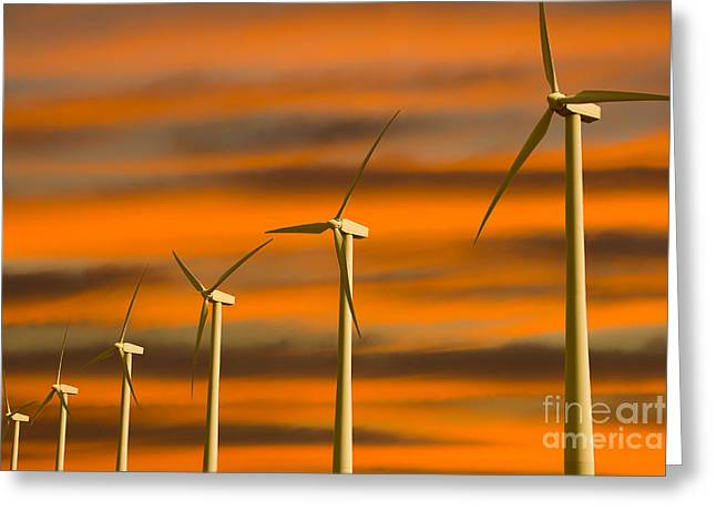 Windmill Farm Greeting Card