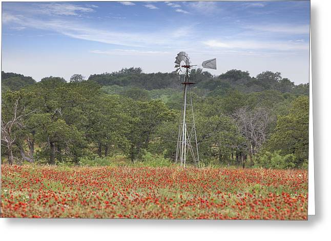 Windmill In A Field Of Texas Wildflowers Greeting Card by Rob Greebon