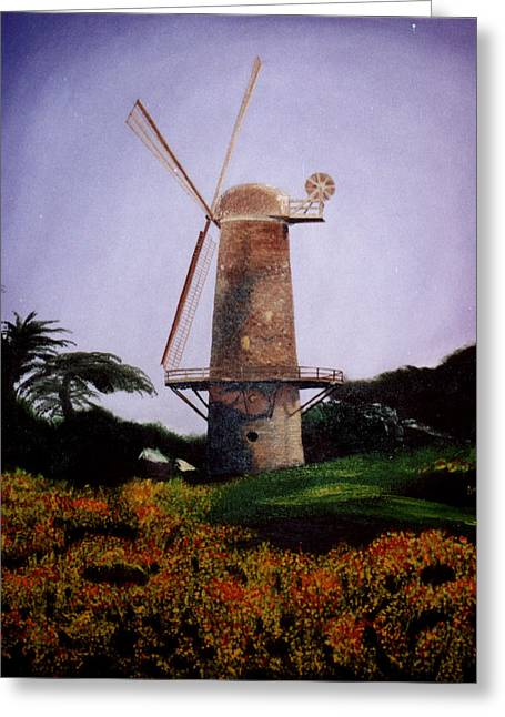 Windmill In Golden Gate Park Greeting Card