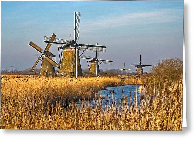Windmills And Reeds Near Kinderdijk Greeting Card