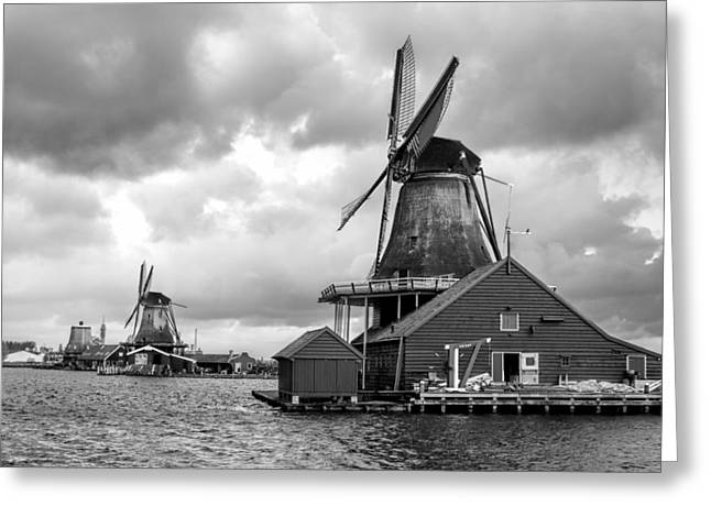 Windmills At Zaanse Schans In Black And White Greeting Card by Jenny Hudson