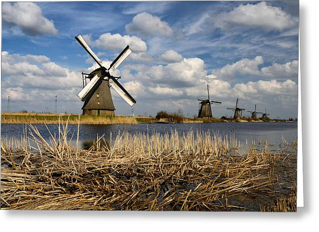 Windmills In Kinderdijk Greeting Card