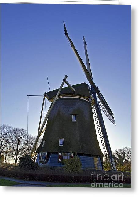 Windmills Of Holland Greeting Card by Pravine Chester