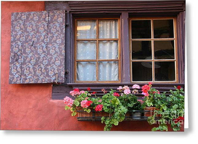 Window And Flower Box Greeting Card by Holly C. Freeman