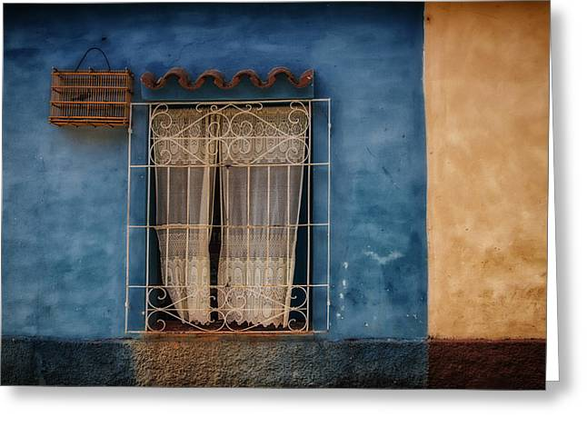 Window And The Birdcage Greeting Card