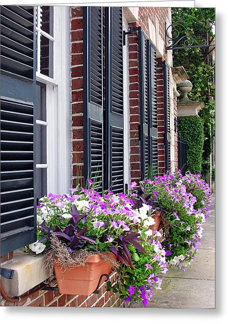 Window Box 2 Greeting Card by Sarah-jane Laubscher
