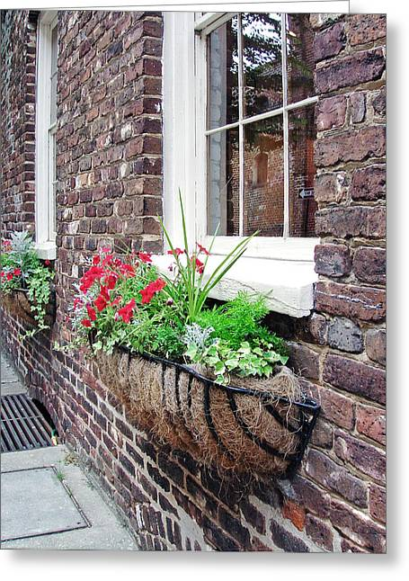 Window Box 3 Greeting Card by Sarah-jane Laubscher